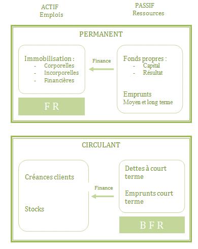 schéma du bilan fonctionnel