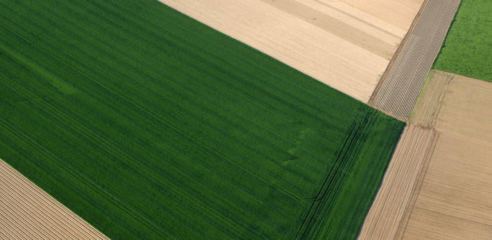 groupement foncier agricole