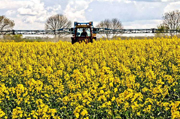 la fiscalité du groupement foncier agricole